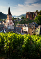 Bacharach and Vinyards Early Morning